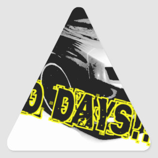 Wild Days! Triangle Sticker