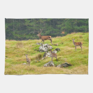 Wild Deer Stag and Hinds Scotland Photograph Tea Towel