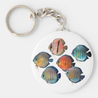 Wild Discus Key Ring