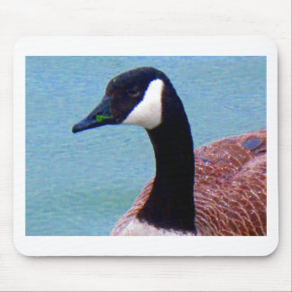 Wild Duck Mouse Pad