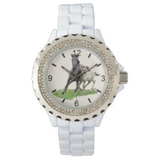 Wild Dulmen Horse Mare Cute Foal Gallop dial-plate Watch