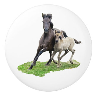Wild Dulmen Horse Mare with Cute Foal Gallop Photo Ceramic Knob