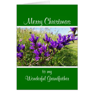 Wild elegant purple flower Christmas Card