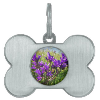 Wild elegant purple flower pet name tag