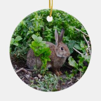 Wild English Rabbit Christmas Ornament