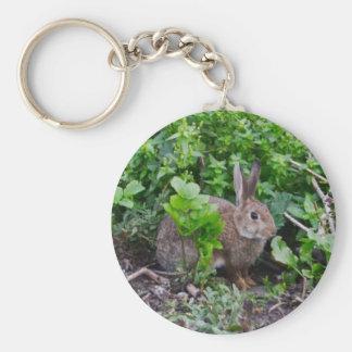 Wild English Rabbit Keychain
