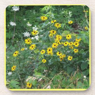 wild flower coaster