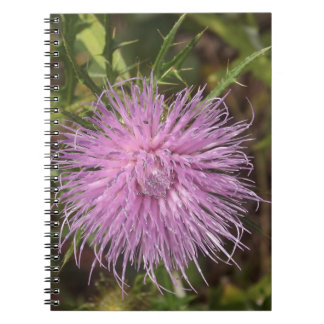 Wild Flower Pink Spiral Notebook
