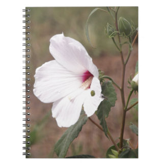 Wild flower spiral note book