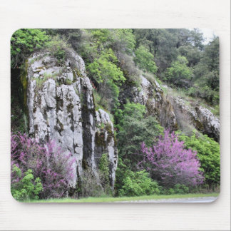 Wild Flowers and Rocks Mouse Pad