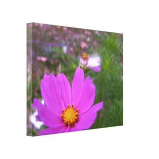 Wild Flowers in the Garden Gallery Wrapped Canvas