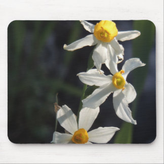 Wild flowers mouse pad