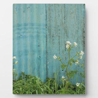 wild flowers nature blue paint fence texture photo plaque