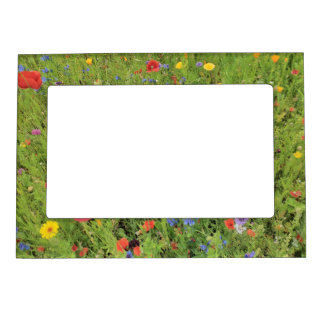 Wild flowers Spring Photo 5x7 Magnetic Frame