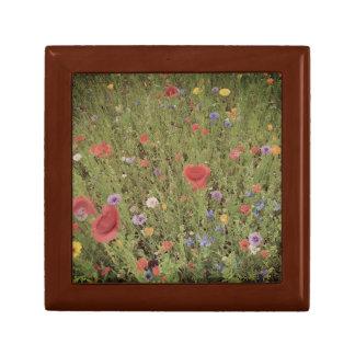 Wild flowers Spring PhotoTile Gift Box