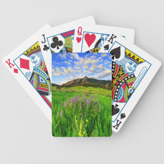 Wild For you Poker Deck