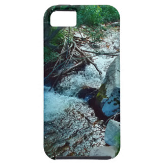 Wild Forest River iPhone 5 Cases