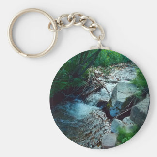 Wild Forest River Key Ring