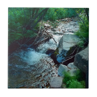 Wild Forest River Tile