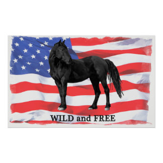 Wild & Free American Wild Horse Poster