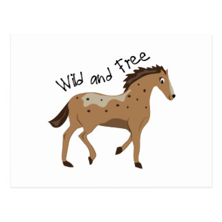 Wild & Free Postcard