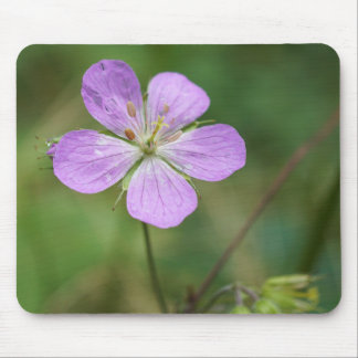 Wild Geranium Pink Wildflower Mousepad