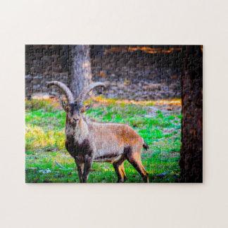 Wild Goat in Nevada. Jigsaw Puzzle