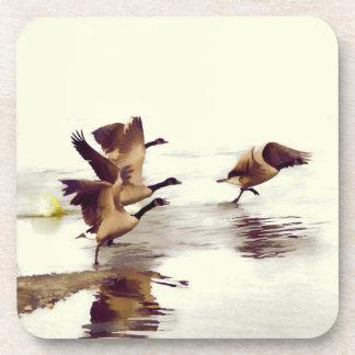 """Wild Goose Chase""   -  Running Geese Coaster"