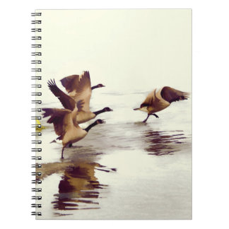 """Wild Goose Chase""   -  Running Geese Notebooks"