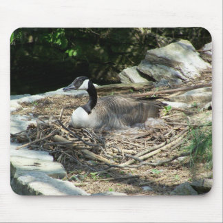 Wild Goose Mouse Pad