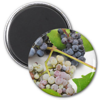 Wild Grape And Leaves 6 Cm Round Magnet