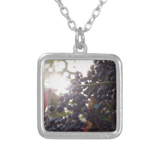 Wild Grapes Silver Plated Necklace