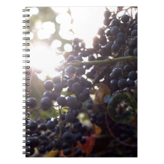 Wild Grapes Spiral Notebook
