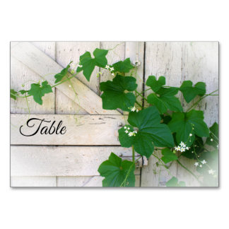Wild grapevine table cards