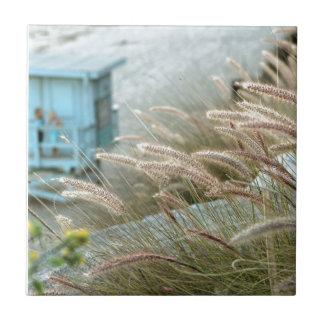 Wild grasses on Malibu beach California Tile