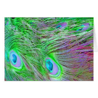 Wild Green Peacock Feathers Card