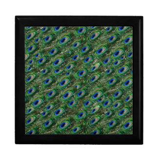 wild green peacock feathers gift box