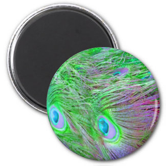 Wild Green Peacock Feathers Magnet