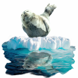 WILD HARBOR SEAL sculpted Wildlife Art Gift Photo Sculpture Magnet