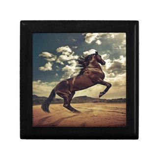 Wild Horse Desert Gift Box