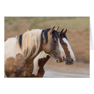 Wild Horse Greeting Card - Painted Friends