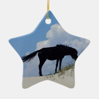 Wild Horse in OBX Ceramic Star Decoration