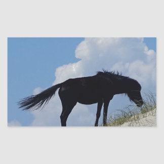 Wild Horse in OBX Rectangular Sticker