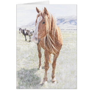 Wild Horse Mustang Christmas (snowflakes interior) Card