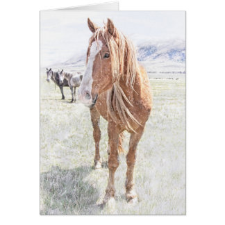 Wild Horse Mustang in Winter (holly inside) Card