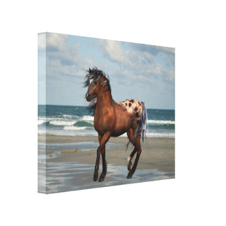 Wild Horse On The Beach Canvas Print