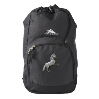 Wild horse rearing up backpack