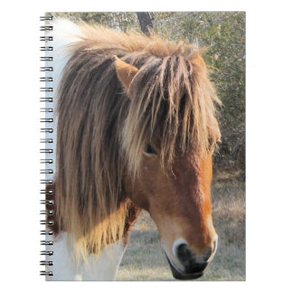 wild horse spiral notebooks