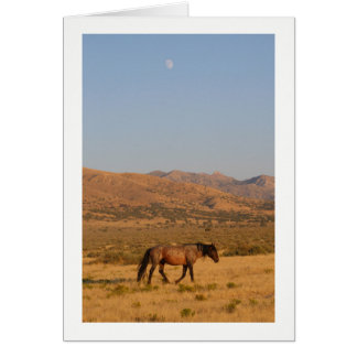 Wild Horse walking home from water hole with moon Card
