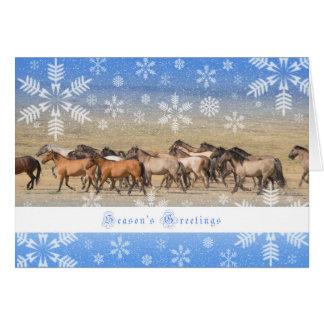 Wild Horses - 5x7 Holiday Card
